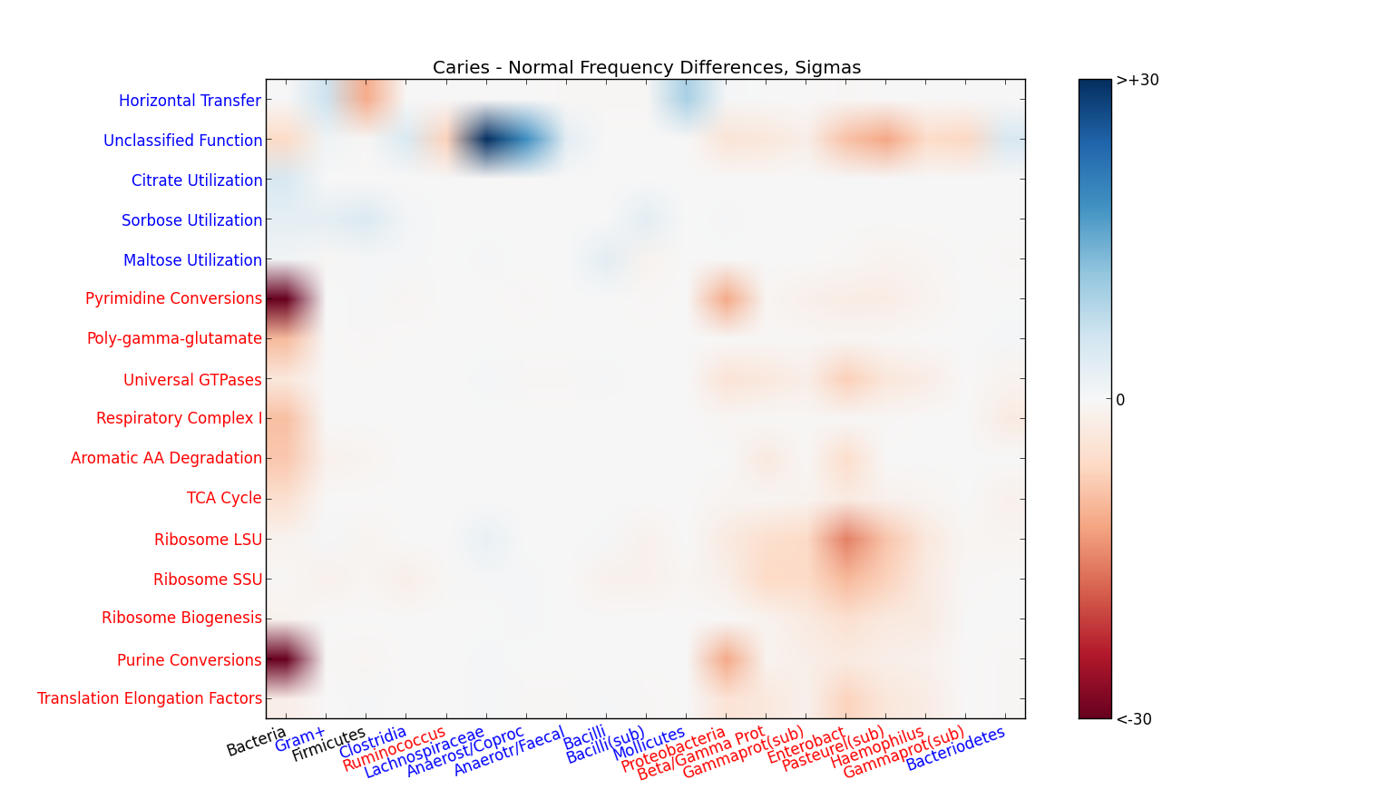 Plot showing significant differences between groups; horizontal axis is phylogeny, vertical axis is function.  Red indicates significant decreases, blue indicates increases.